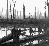 Glasgow University Passchendaele Photo